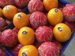 Mandarines Morket - фото 3