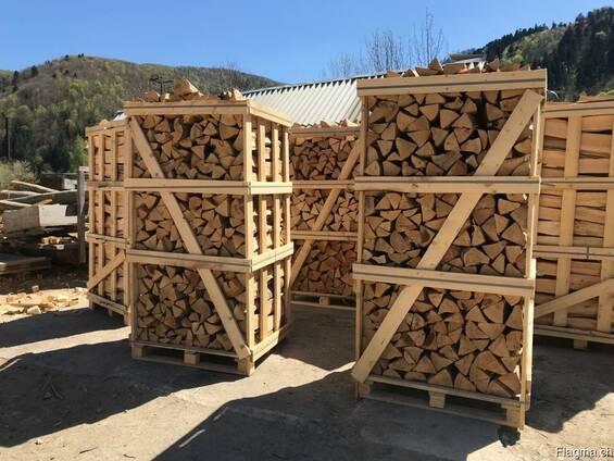 Brennholz aus Buche, Hainbuche