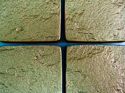 Nous proposons des moules thermo-polyuréthanes (TPU) non seu
